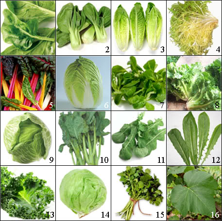 Image result for pictures of leafy greens
